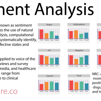 Sentiment Analysis : The Definitive Guide
