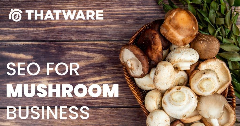 SEO for Mushrooms
