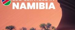 SEO Services Namibia