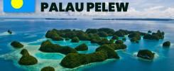 SEO Services Palau Pelew