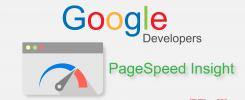 Google PSI