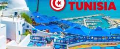 SEO Services in Tunisia