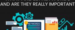 lsi keywords